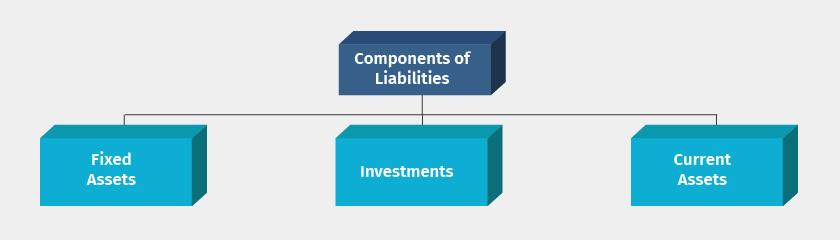 balance sheet components assets