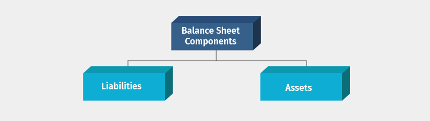 balance sheet components