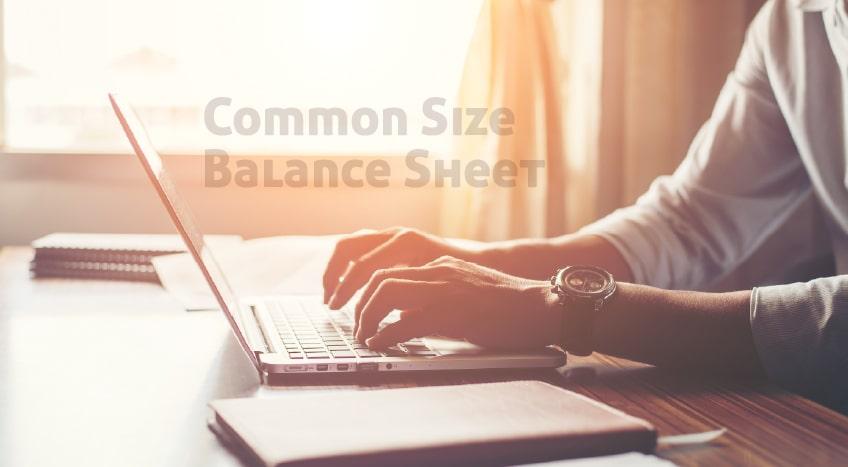 Common Size Balance Sheet Banner